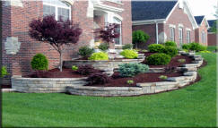 Overland Park Lawn Care, Leawood Lawn Service, Kansas City Lawn Mowing